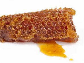 Пчеларите излизат на протест днес