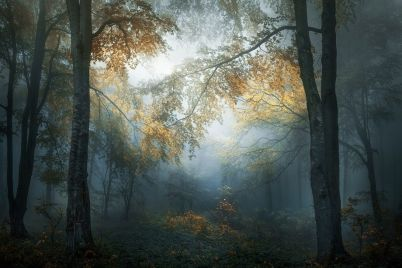 2347_4831_VeselinAtanasov_Bulgaria_Open_LandscapeNature2018Opencompetition_2018-920x640.jpg