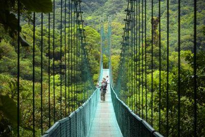 Monte_Verde_Verde2.jpg