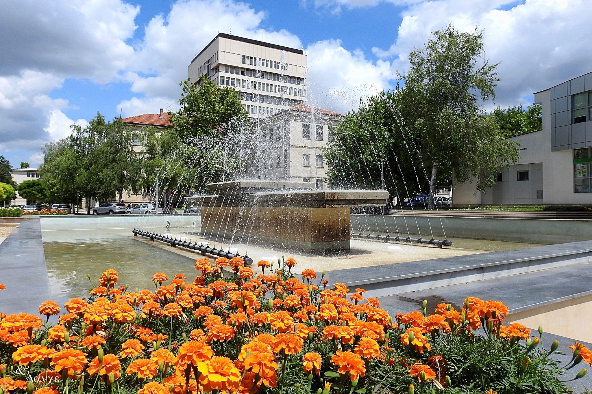 Razgrad-TSentar-Obshtina-Fontan-TSvetya.jpg