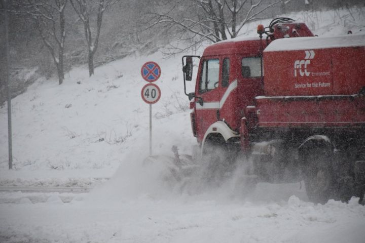 Snegorin.jpg