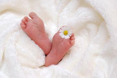 baby-718146_1280.jpg