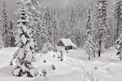 depositphotos_90199292-stock-photo-cottage-among-snowy-forest.jpg