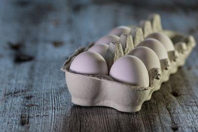 eggs-3183410_960_720.jpg