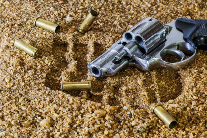 firearm-409252_1280.jpg