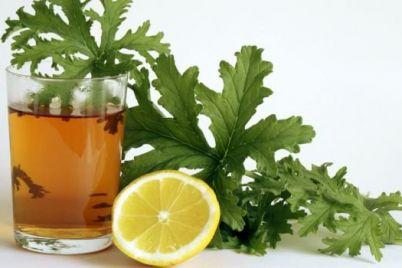 geranium-tea-juce-indrishe.jpg