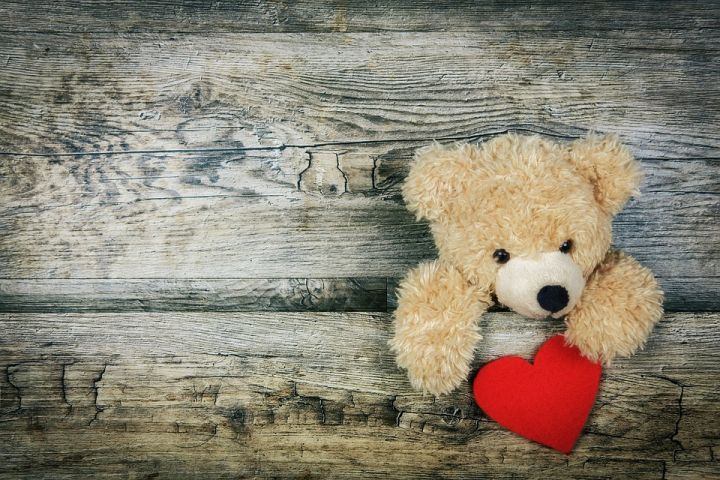 heart-3096380_960_720.jpg