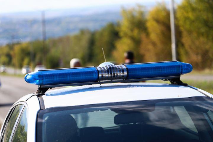 Задържаха 69-годишен мъж в Драгоман за блудство с две сестри