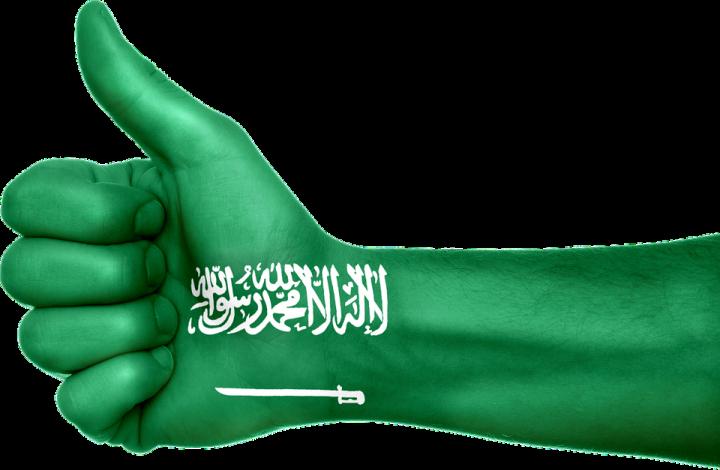 saudi-arabia-648330_960_720.png