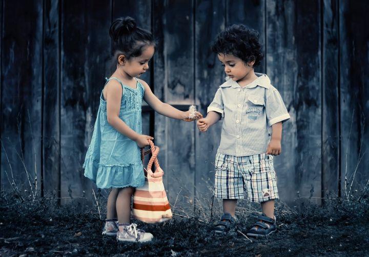 siblings-817369_960_720.jpg