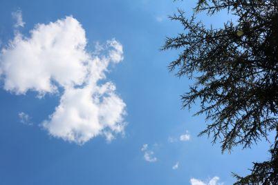 sky-1955066_1920.jpg