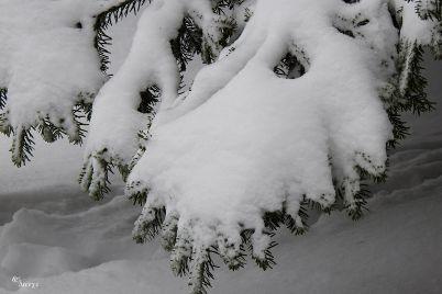 zima-rz12.jpg